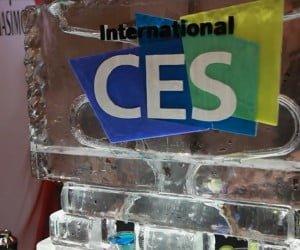 CES 2013 - Ice Sculpture