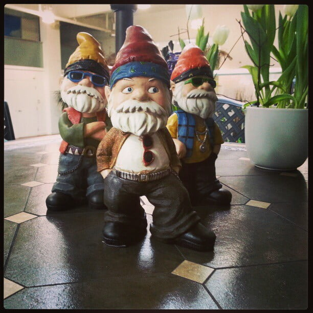 Photo: Canadian Tire's newest gnomes for 2013.