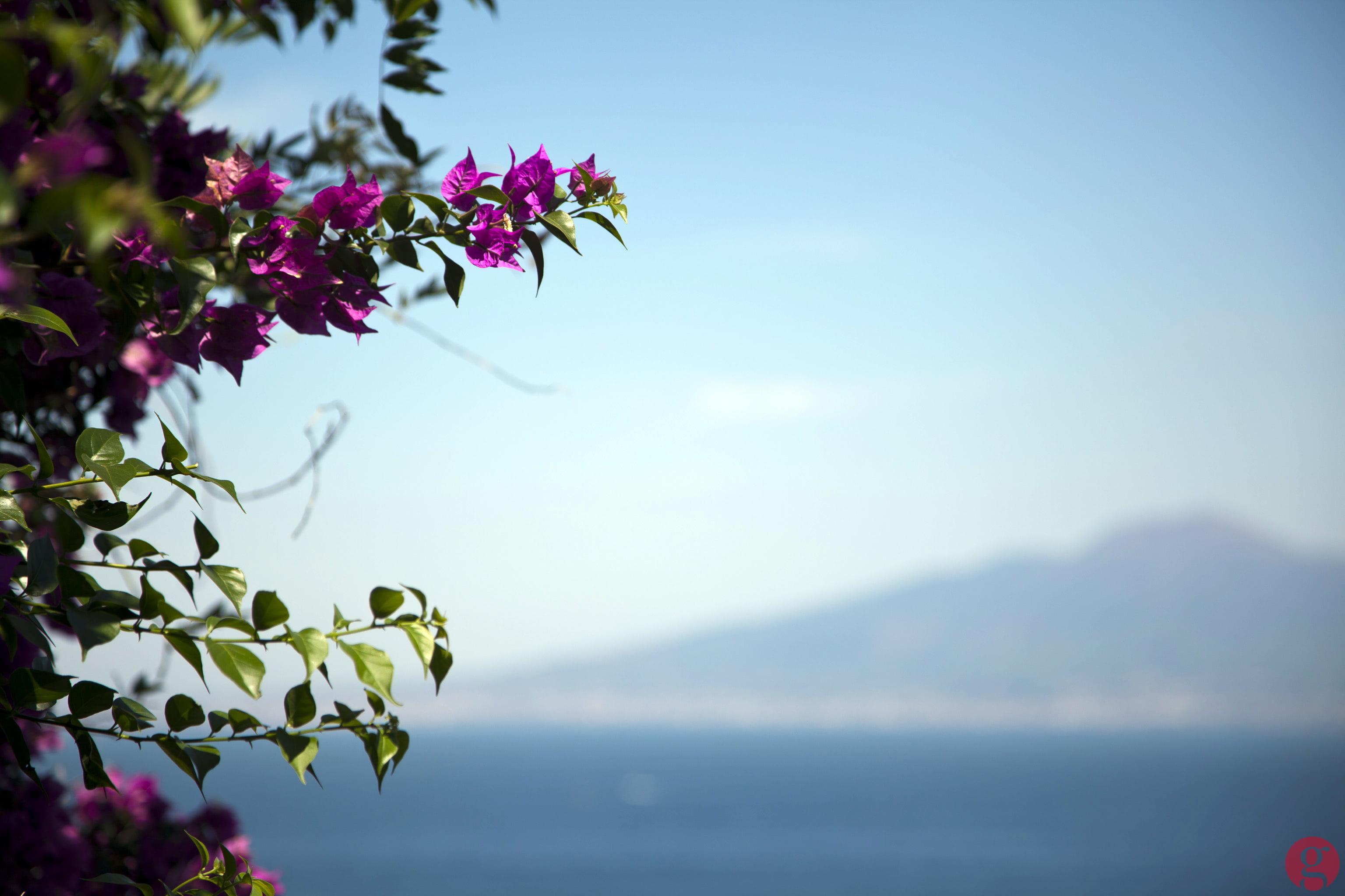 View of Mount Vesuvius