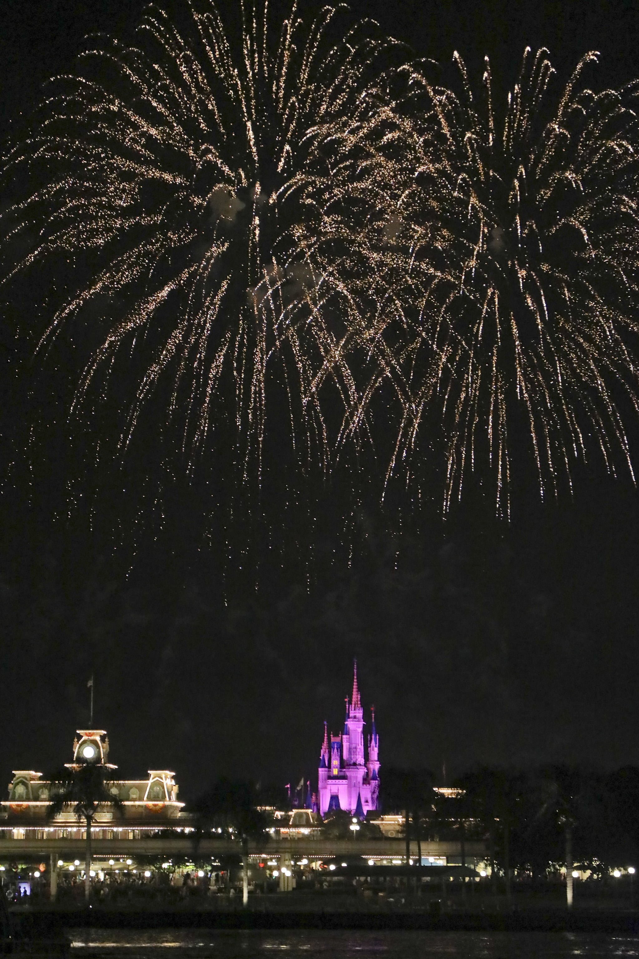 Walt Disney World - Magic Kingdom fireworks
