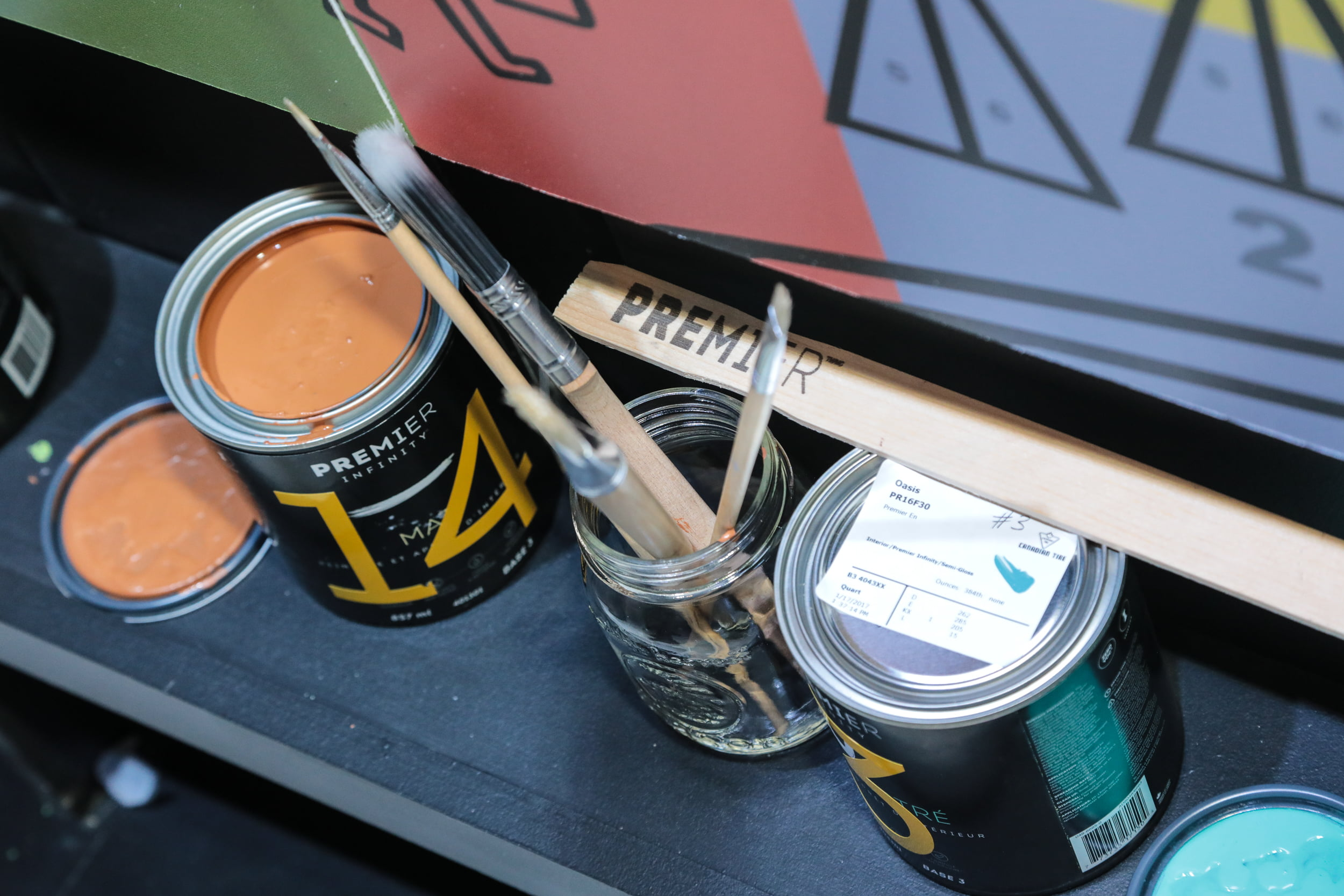 Canadian Tire Paint with Premier