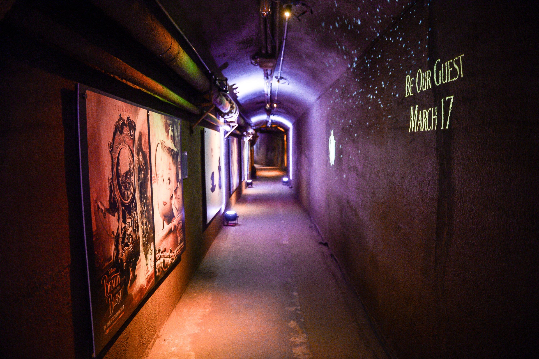 Enchanted Tunnel