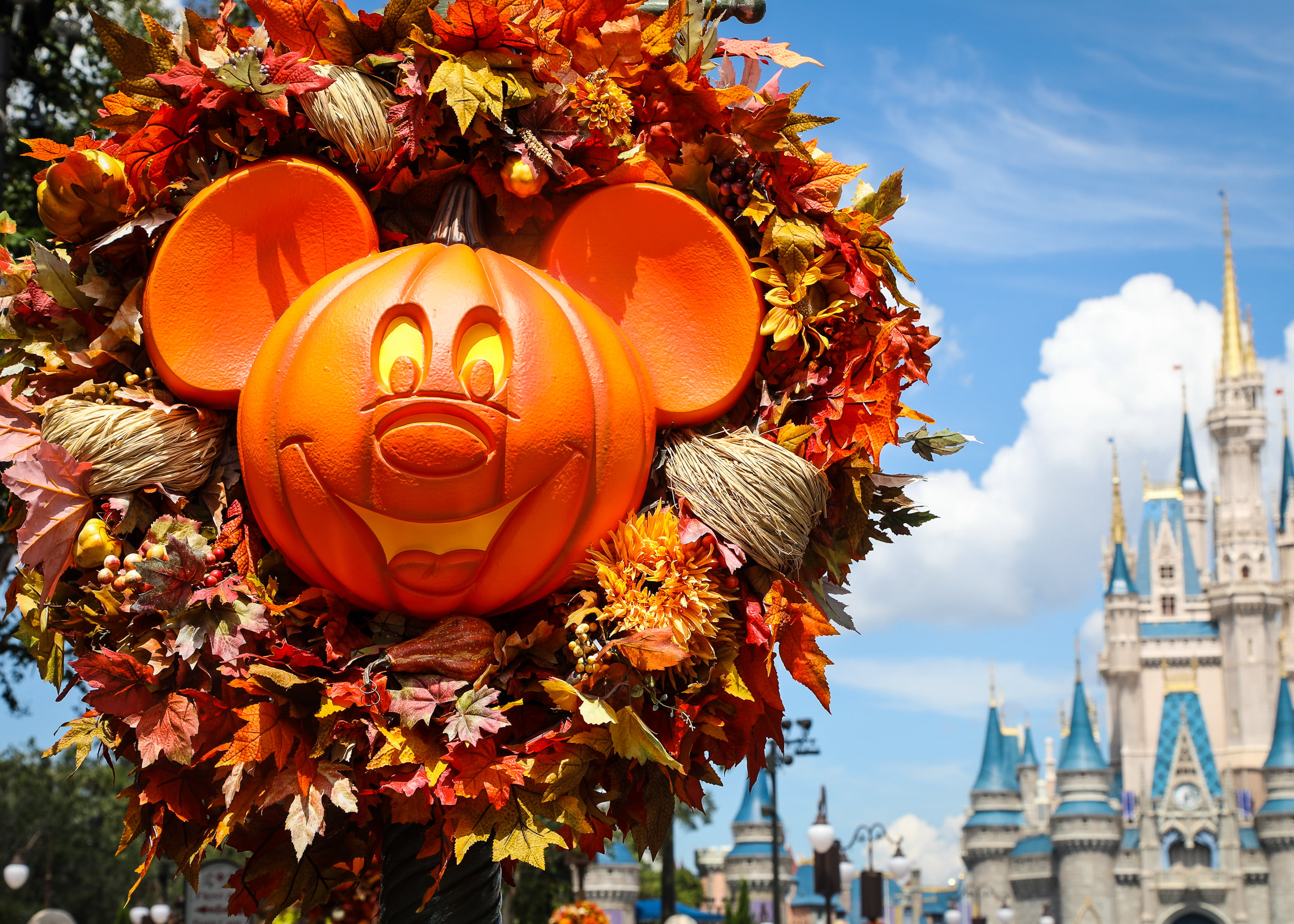 mickey's not so scary halloween party at walt disney world | the gate