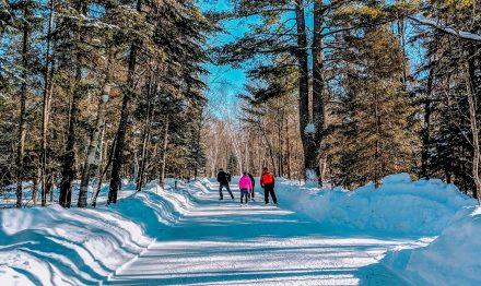 The Ice Trail at Arrowhead Provincial Park