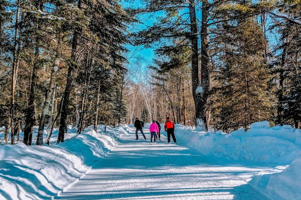 The Ice Trail at Arrowhead Provincial Park