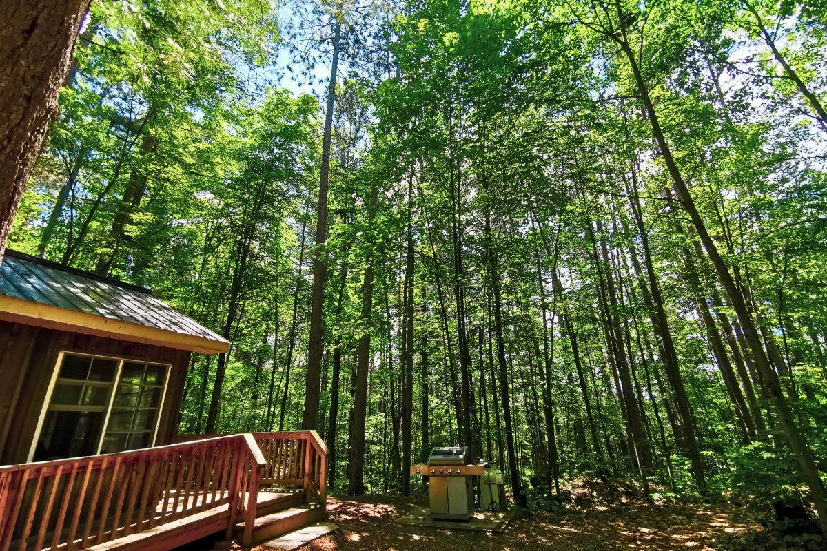 Bon Echo Camp Cabins