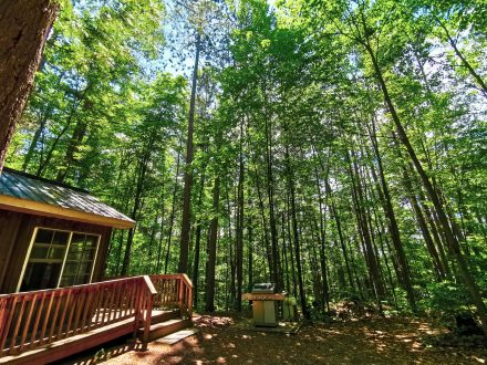 Bon Echo Camp Cabins